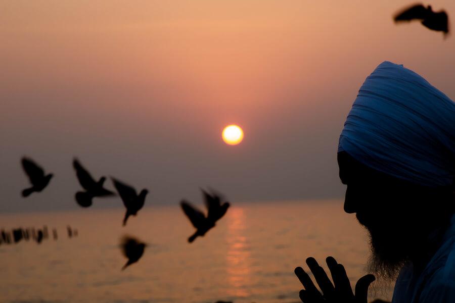 Pondicherry one February 2017 080.jpg